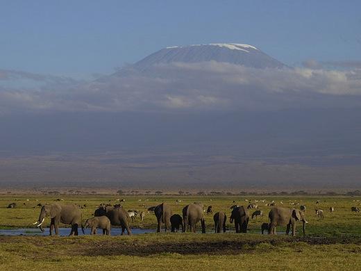 De indrukwekkende Kilimanjaro (Foto: Luis Sanz)