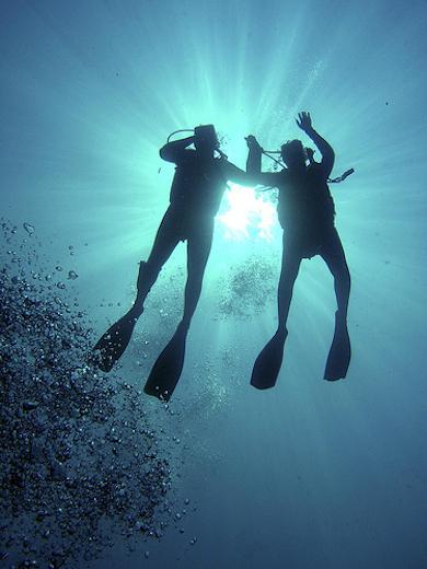 sulawesi-duiken