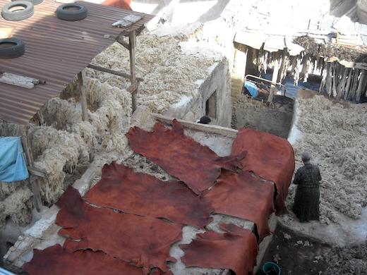 leerlooierij-fez-marokko