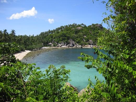 shark-bay-koh-tao-thailand