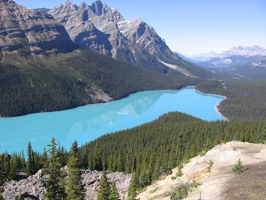 Peyto Lake in Banff National Park.