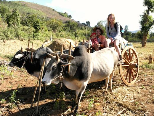 myanmar-ritje-platteland